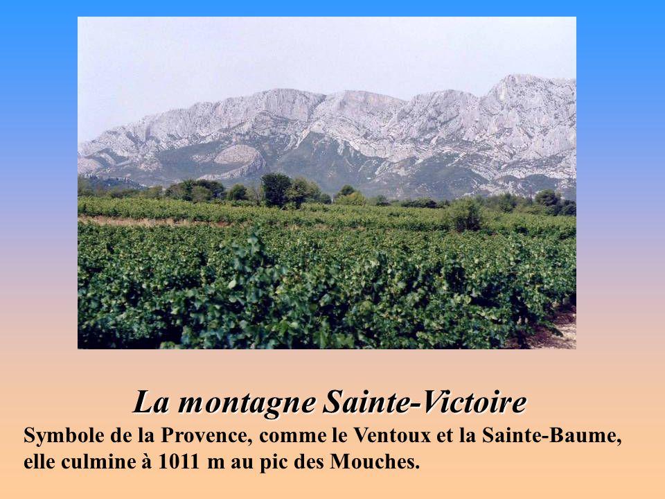La Sainte-Baume Résolument abrupte au nord, laissant doucement glisser ses arides pentes méridionales vers le bassin de Cuges, cette montagne typiquem