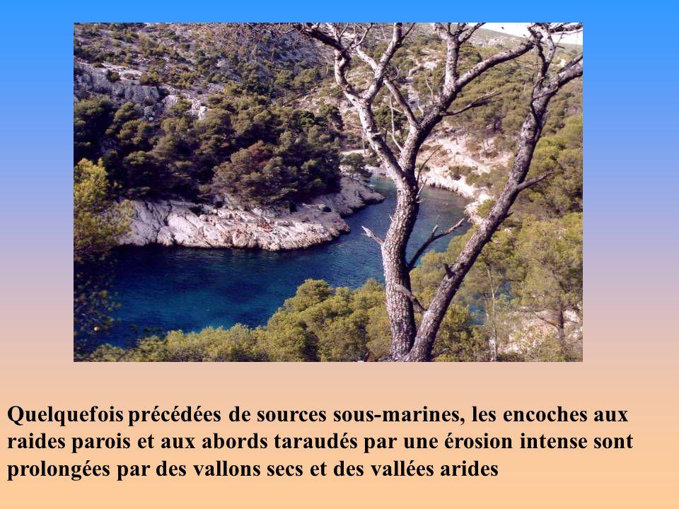 La montagne Sainte-Victoire Symbole de la Provence, comme le Ventoux et la Sainte-Baume, elle culmine à 1011 m au pic des Mouches.