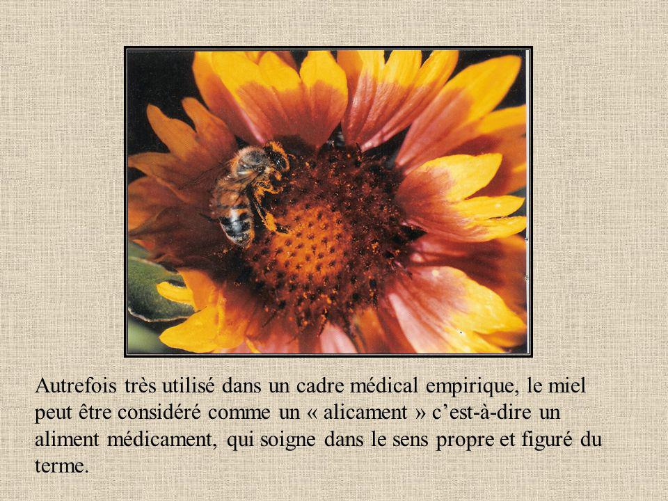 Autrefois très utilisé dans un cadre médical empirique, le miel peut être considéré comme un « alicament » cest-à-dire un aliment médicament, qui soigne dans le sens propre et figuré du terme.