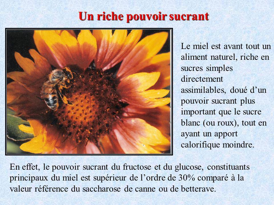 Autrefois très utilisé dans un cadre médical empirique, le miel peut être considéré comme un « alicament » cest-à-dire un aliment médicament, qui soig
