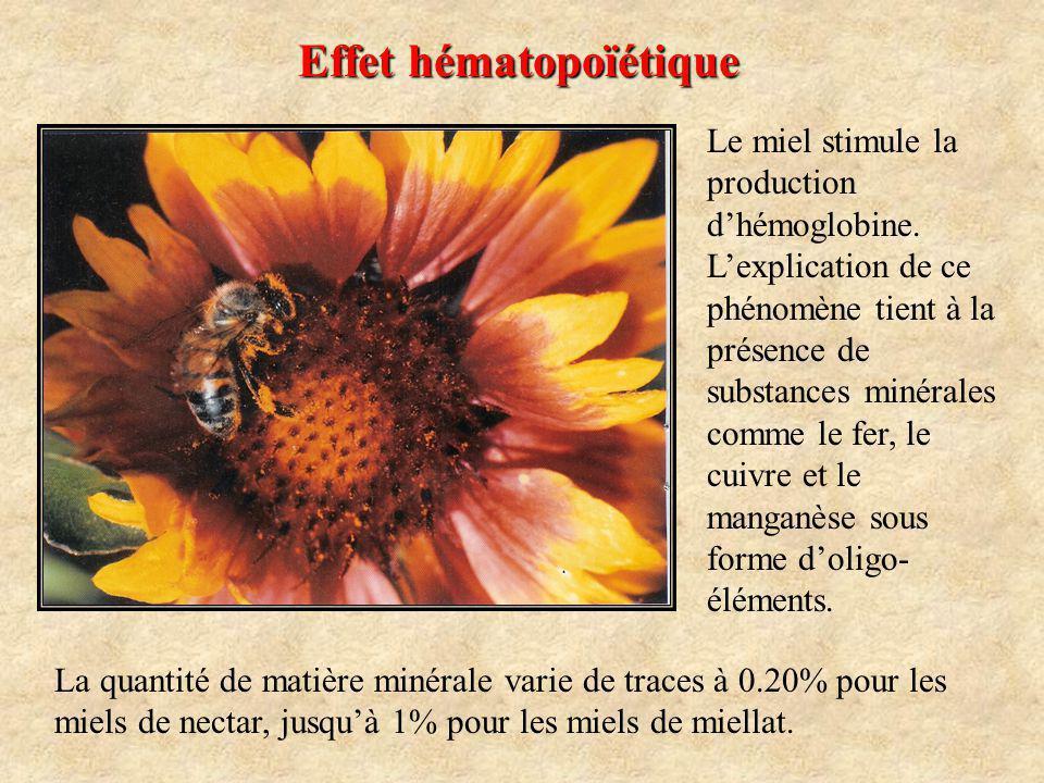 Effet hématopoïétique Le miel stimule la production dhémoglobine.