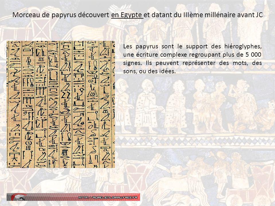 Morceau de papyrus découvert en Egypte et datant du IIIème millénaire avant JC Les papyrus sont le support des hiéroglyphes, une écriture complexe regroupant plus de 5 000 signes.