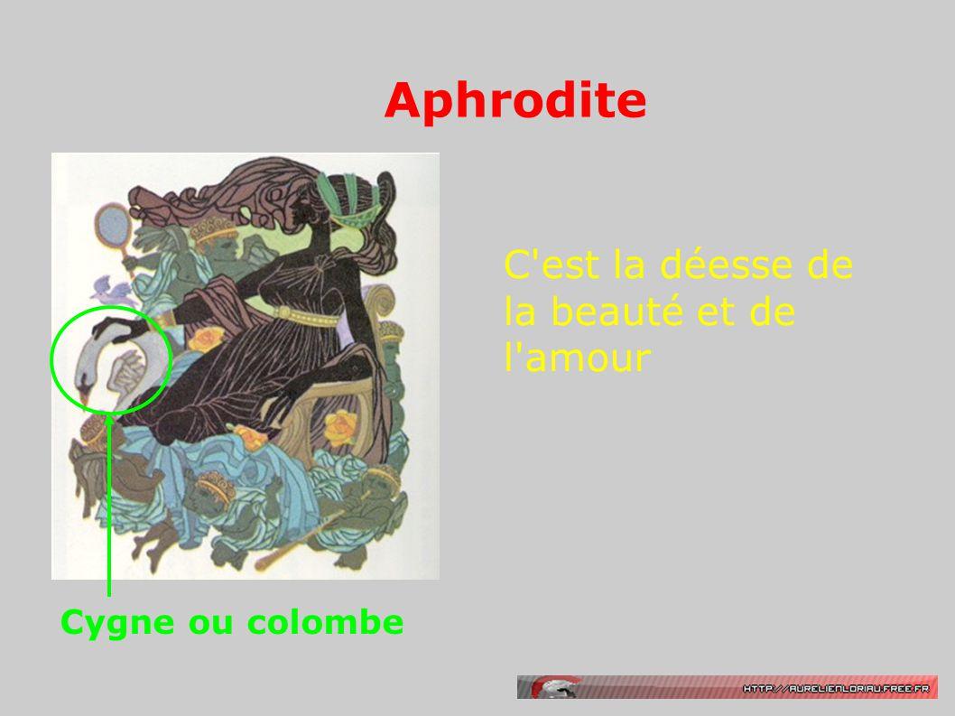 Aphrodite C'est la déesse de la beauté et de l'amour Cygne ou colombe