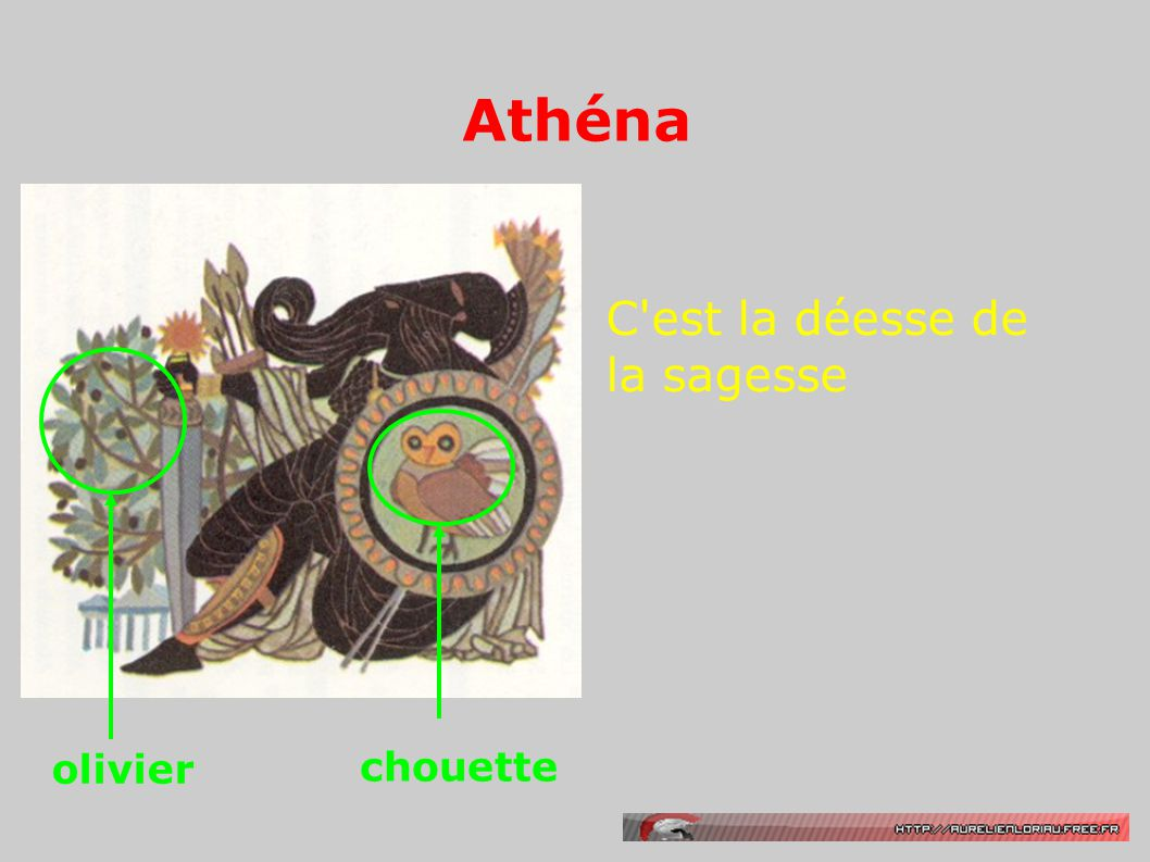 Athéna C'est la déesse de la sagesse olivier chouette