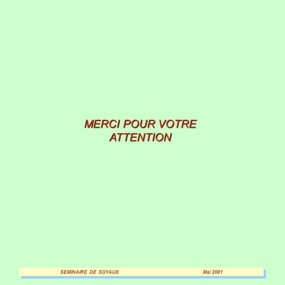 MERCI POUR VOTRE ATTENTION SEMINAIRE DE SOYAUXMai 2001