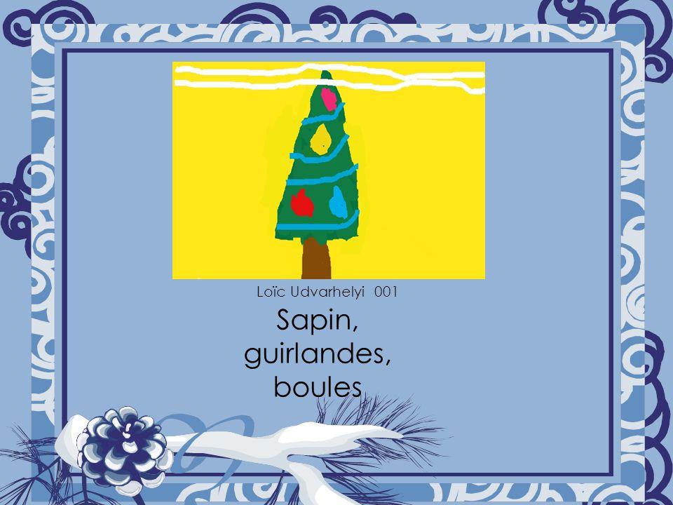 Sapin, guirlandes, boules Loïc Udvarhelyi 001