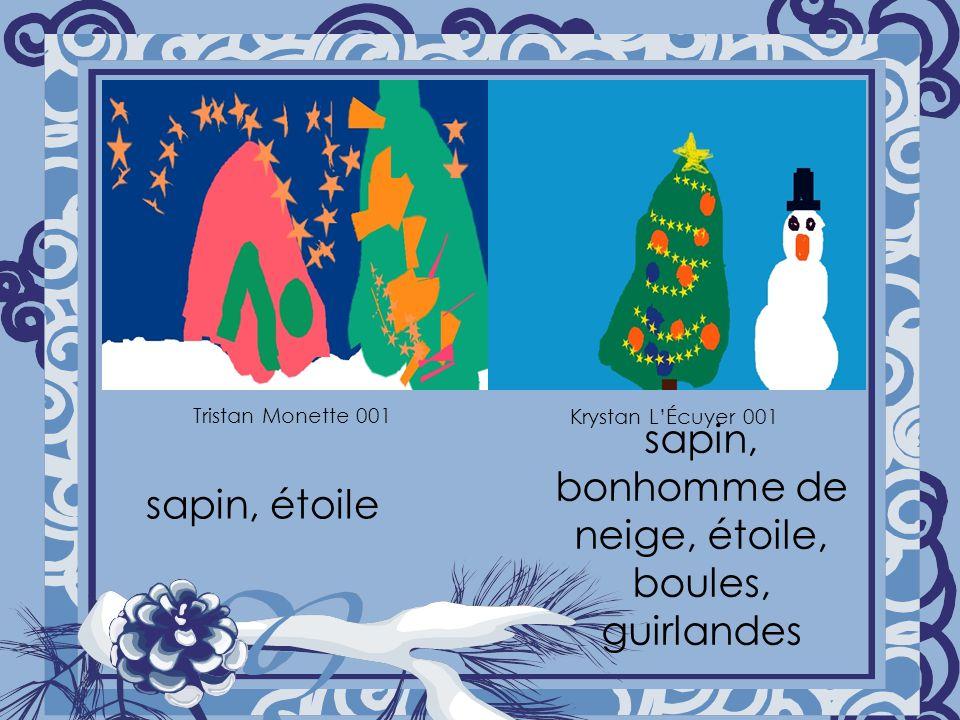 sapin, étoile sapin, bonhomme de neige, étoile, boules, guirlandes Tristan Monette 001 Krystan LÉcuyer 001