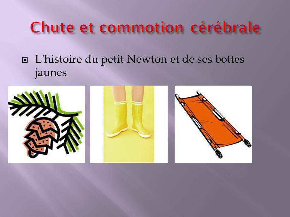 Lhistoire du petit Newton et de ses bottes jaunes