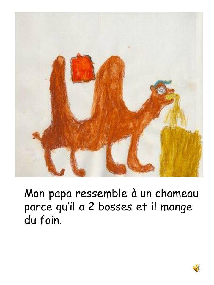 Papa est un chameau Julie et compagnie Classe de 2 e année Écrit et illustré par Alexandre Fortin