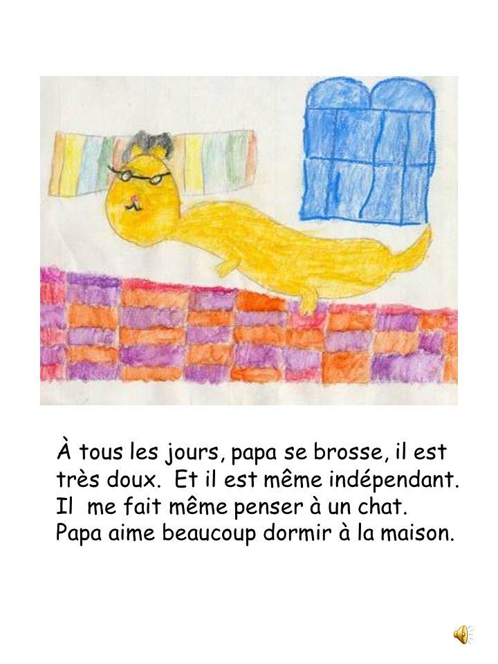 Papa est un chat Julie et compagnie Classe de 2 e année Écrit et illustré par Léa Dufort