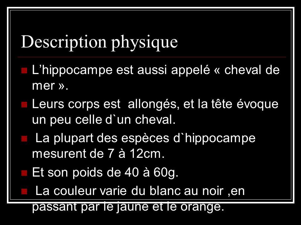Description physique Lhippocampe est aussi appelé « cheval de mer ».