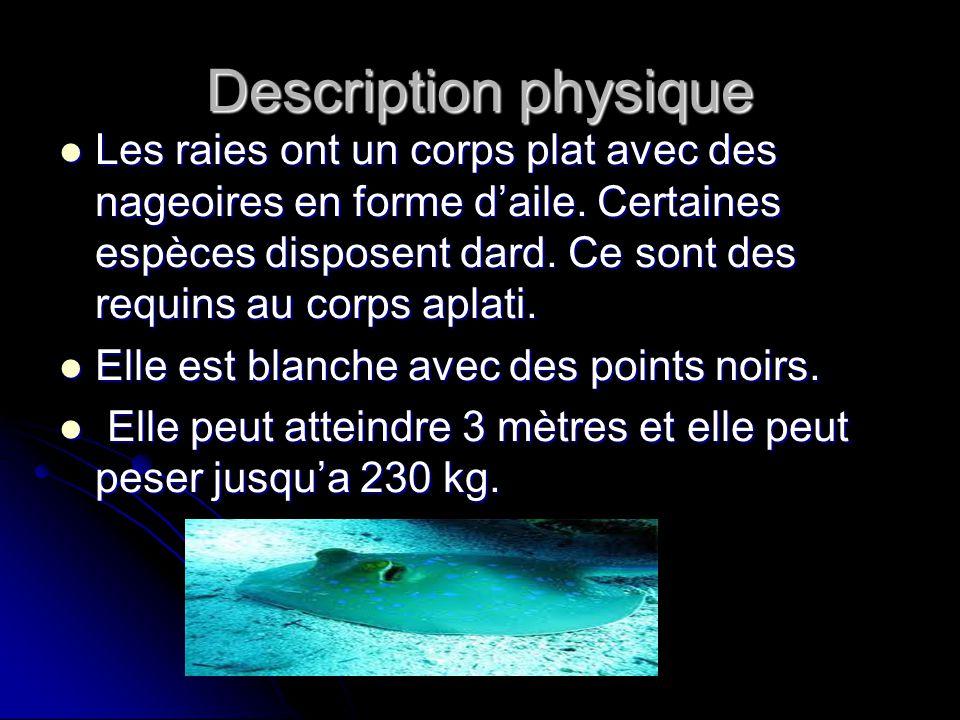 Description physique Les raies ont un corps plat avec des nageoires en forme daile. Certaines espèces disposent dard. Ce sont des requins au corps apl