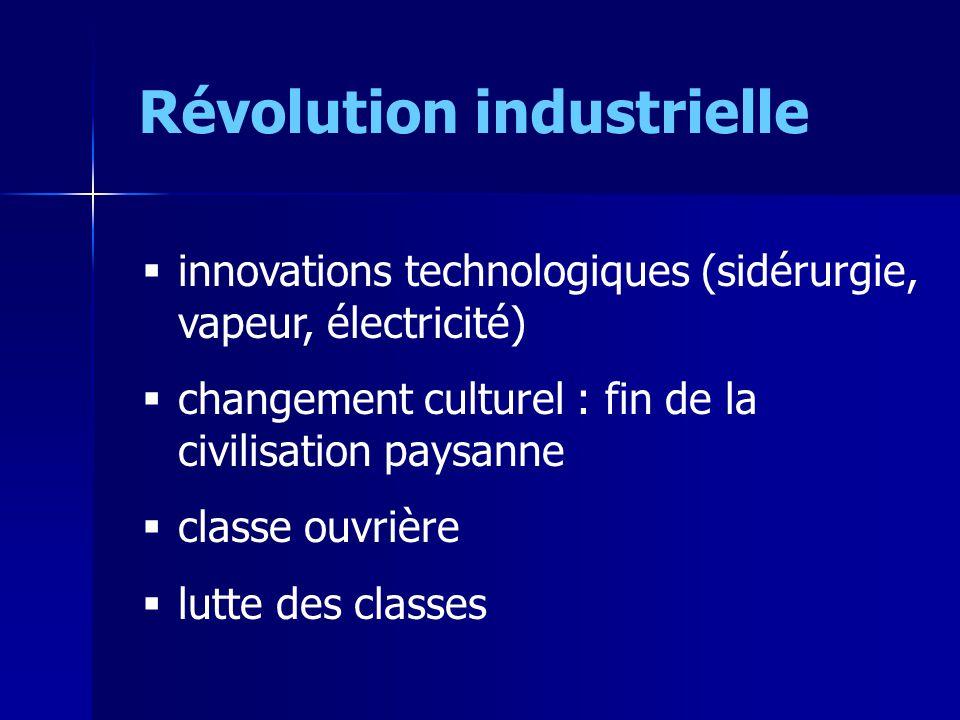 Révolution industrielle innovations technologiques (sidérurgie, vapeur, électricité) changement culturel : fin de la civilisation paysanne classe ouvrière lutte des classes