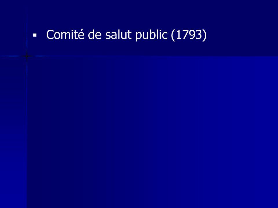 Comité de salut public (1793)