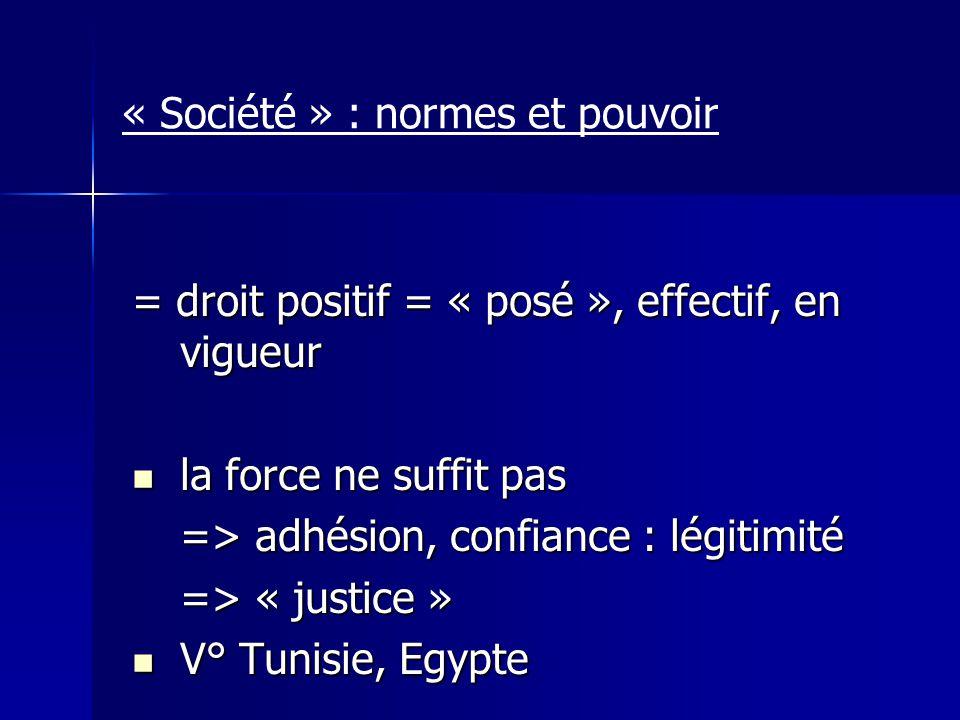 « Société » : normes et pouvoir = droit positif = « posé », effectif, en vigueur la force ne suffit pas la force ne suffit pas => adhésion, confiance