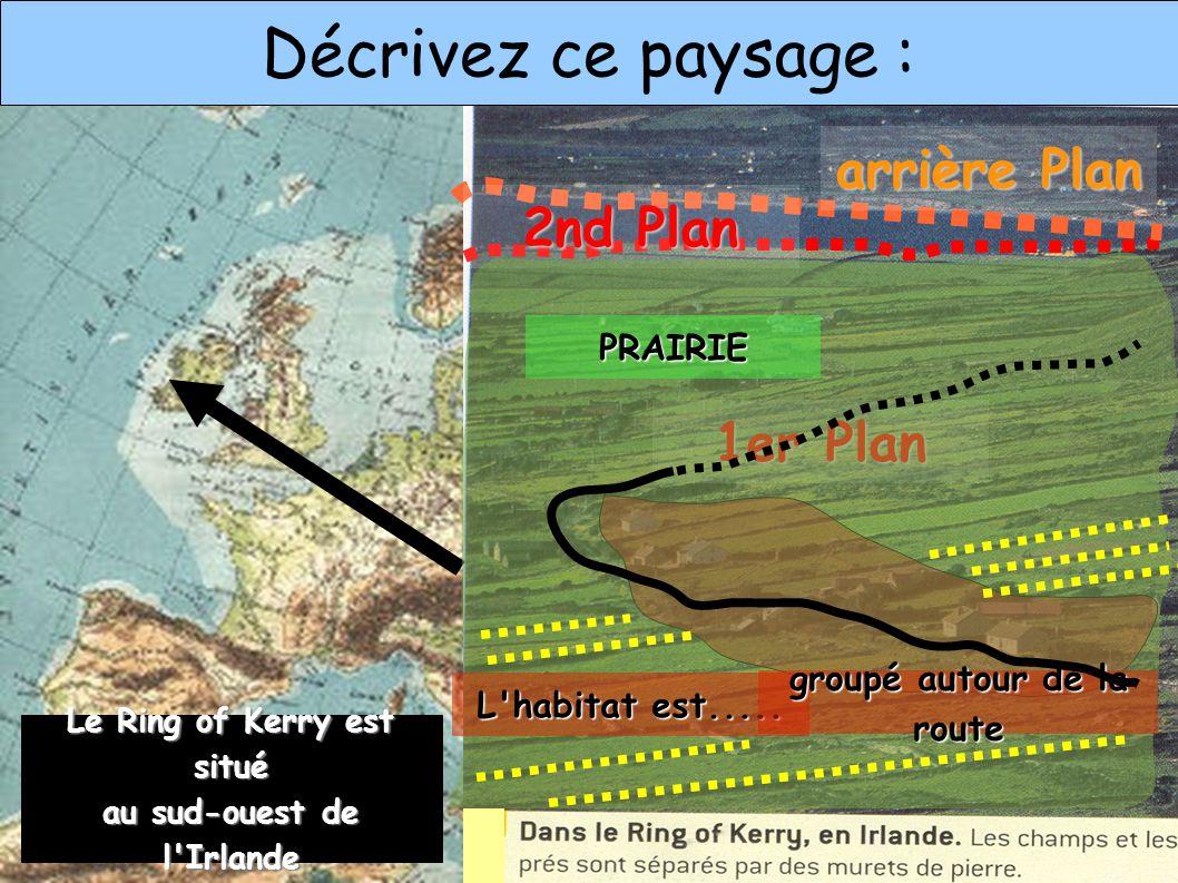 Décrivez ce paysage : 1er Plan 2nd Plan arrière Plan PRAIRIE L habitat est.....