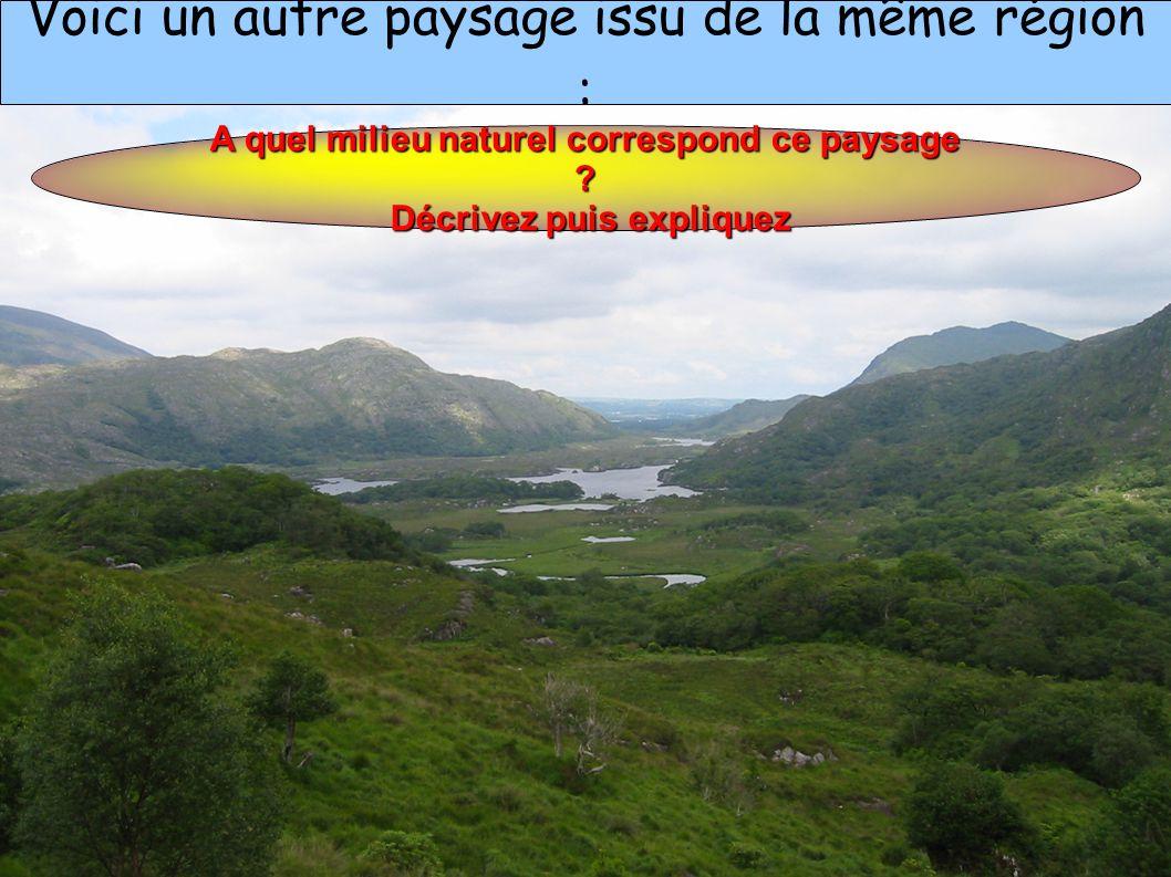 Voici un autre paysage issu de la même région : A quel milieu naturel correspond ce paysage .