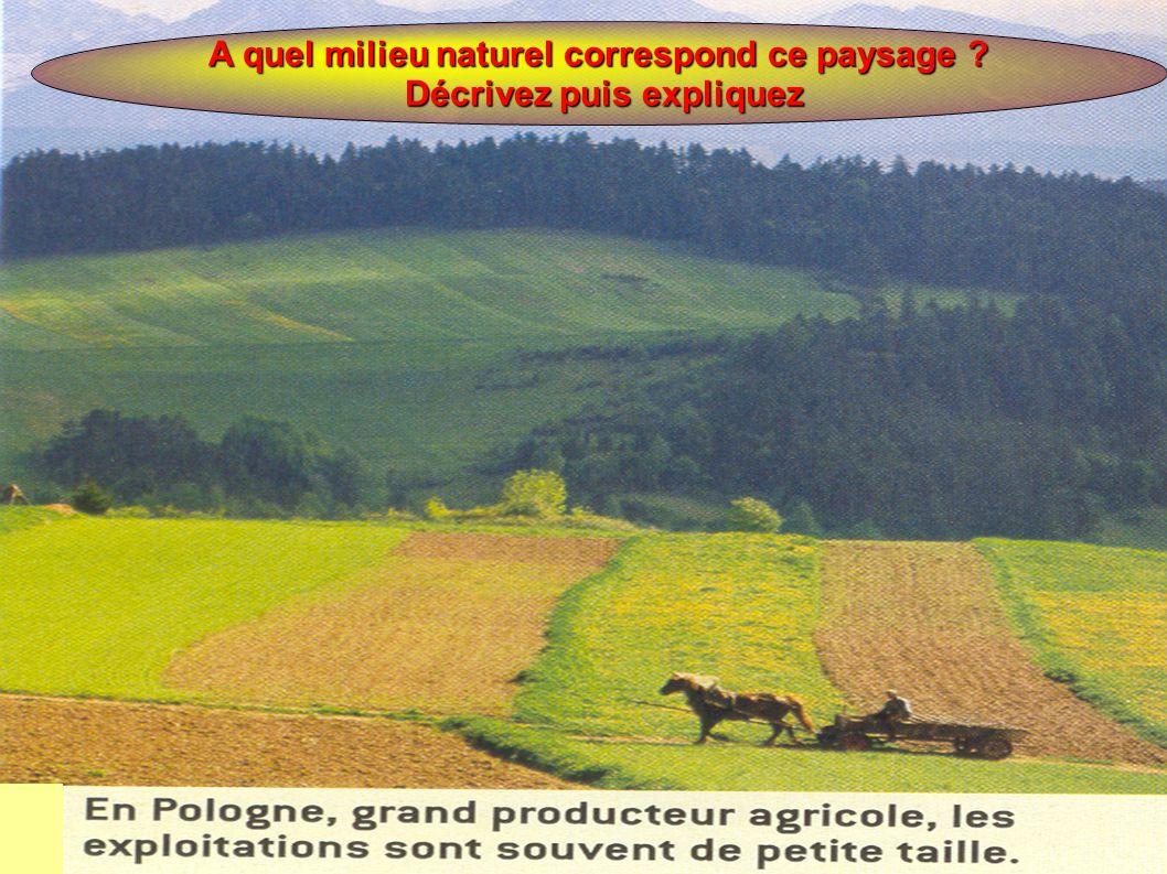 A quel milieu naturel correspond ce paysage ? Décrivez puis expliquez Décrivez puis expliquez