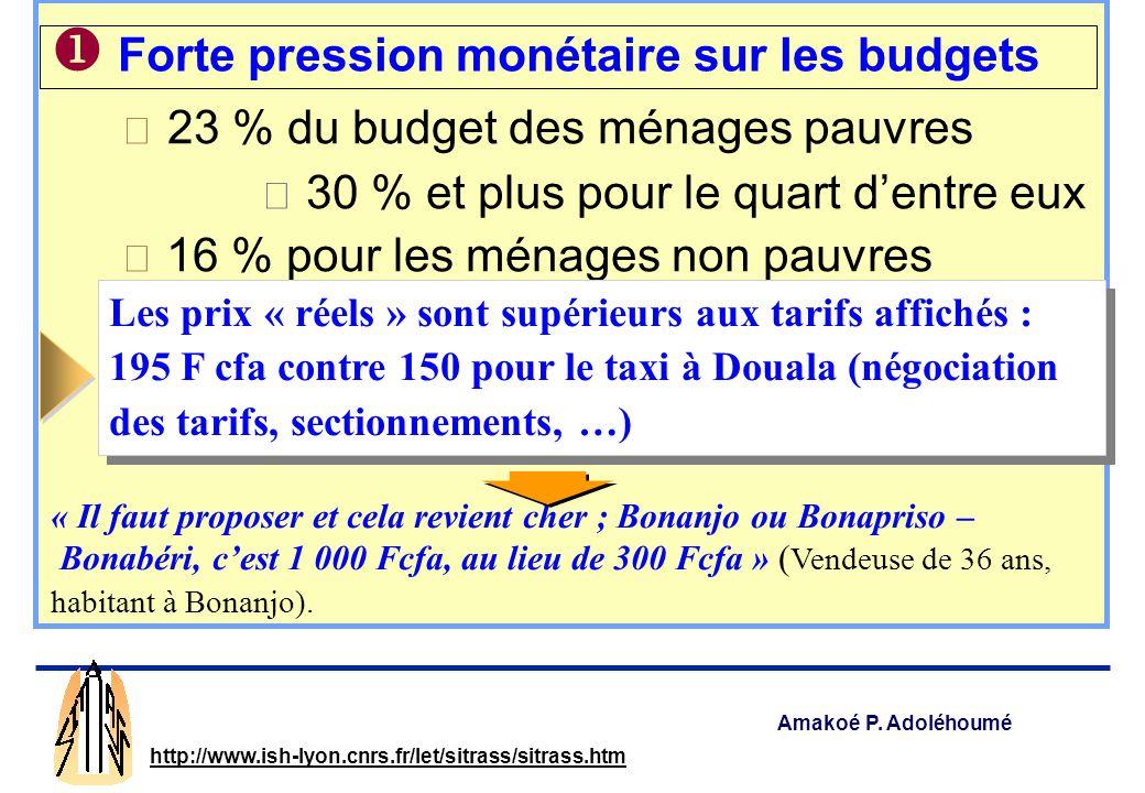 Amakoé P. Adoléhoumé http://www.ish-lyon.cnrs.fr/let/sitrass/sitrass.htm 3 principaux aspects Une forte pression monétaire sur les budgets Un accès en