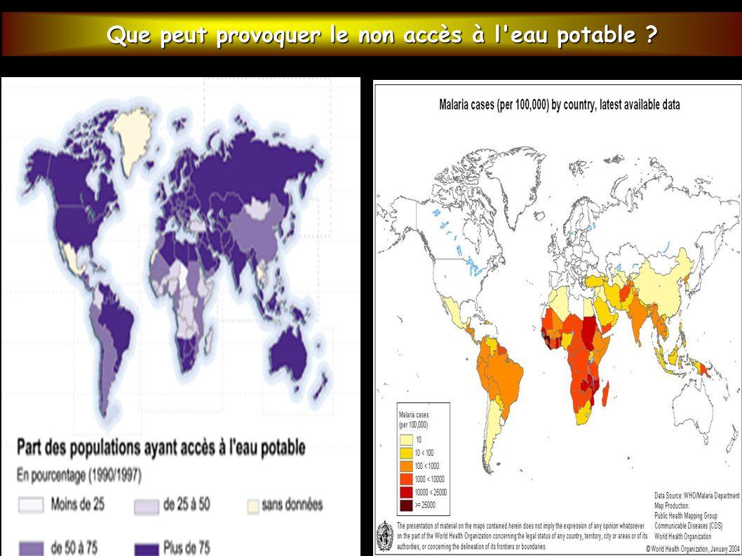 Que peut provoquer le non accès à l'eau potable ? Que peut provoquer le non accès à l'eau potable ?