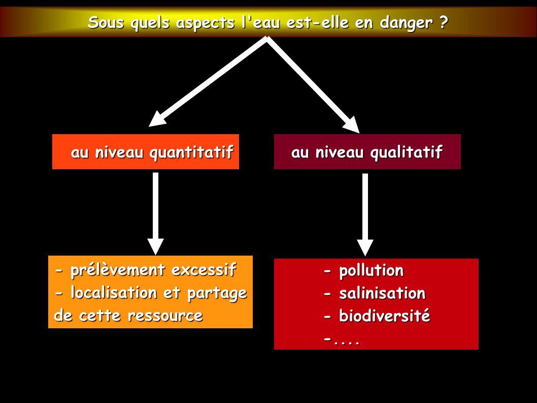 au niveau quantitatif au niveau quantitatif au niveau qualitatif - prélèvement excessif - localisation et partage de cette ressource - pollution - sal