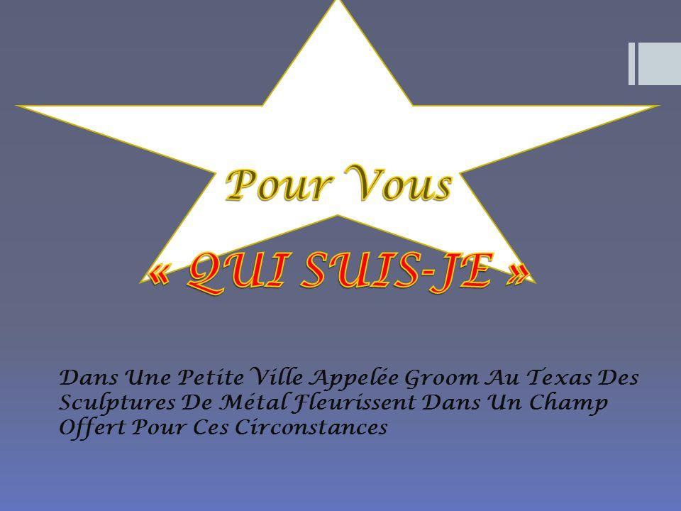 Dans Une Petite Ville Appelée Groom Au Texas Des Sculptures De Métal Fleurissent Dans Un Champ Offert Pour Ces Circonstances