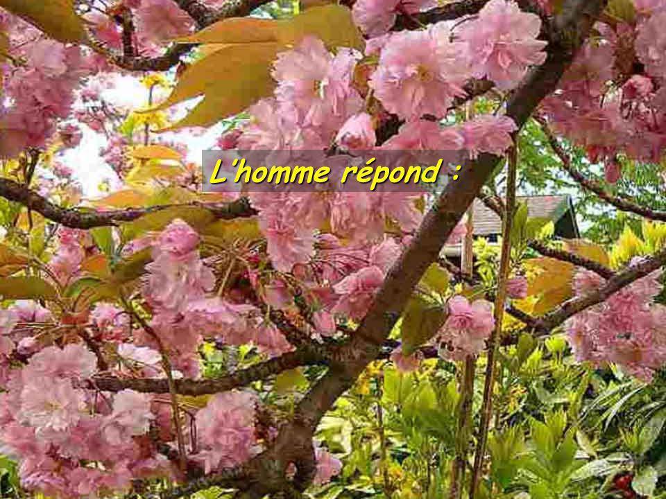 Lhomme répond :