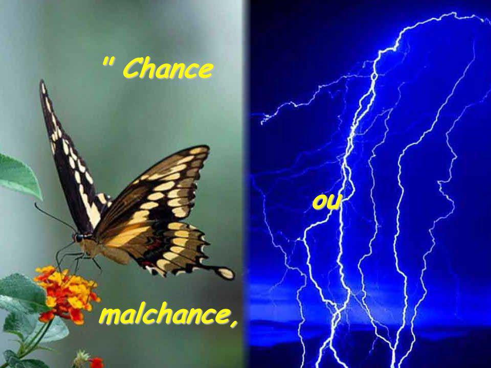 Chance ou malchance,
