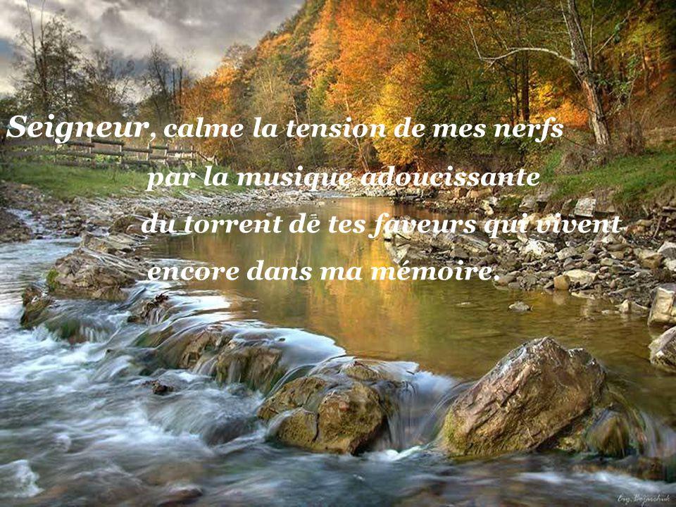 Seigneur, donne-moi, malgré la confusion qui règne de nos jours, le calme que lon rencontre sur les Collines éternelles.