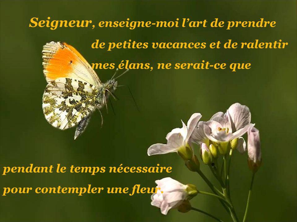 Seigneur, enseigne-moi lart de prendre de petites vacances et de ralentir mes élans, ne serait-ce que pendant le temps nécessaire pour contempler une fleur.