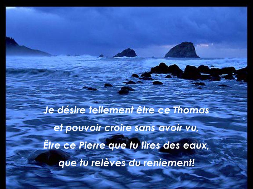 Je désire tellement être ce Thomas et pouvoir croire sans avoir vu, Être ce Pierre que tu tires des eaux, que tu relèves du reniement!