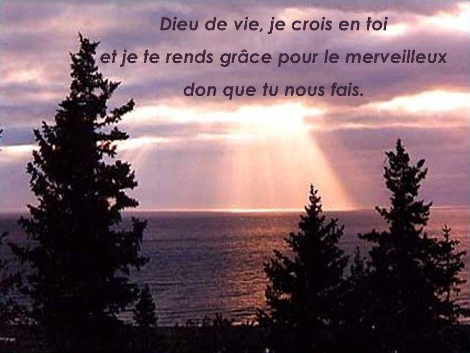 Dieu de vie, je crois en toi et je te rends grâce pour le merveilleux don que tu nous fais.
