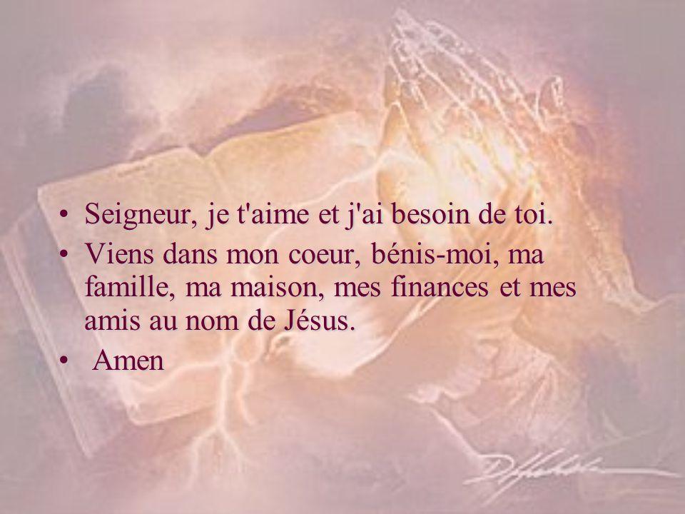 Seigneur, je t'aime et j'ai besoin de toi.Seigneur, je t'aime et j'ai besoin de toi. Viens dans mon coeur, bénis-moi, ma famille, ma maison, mes finan