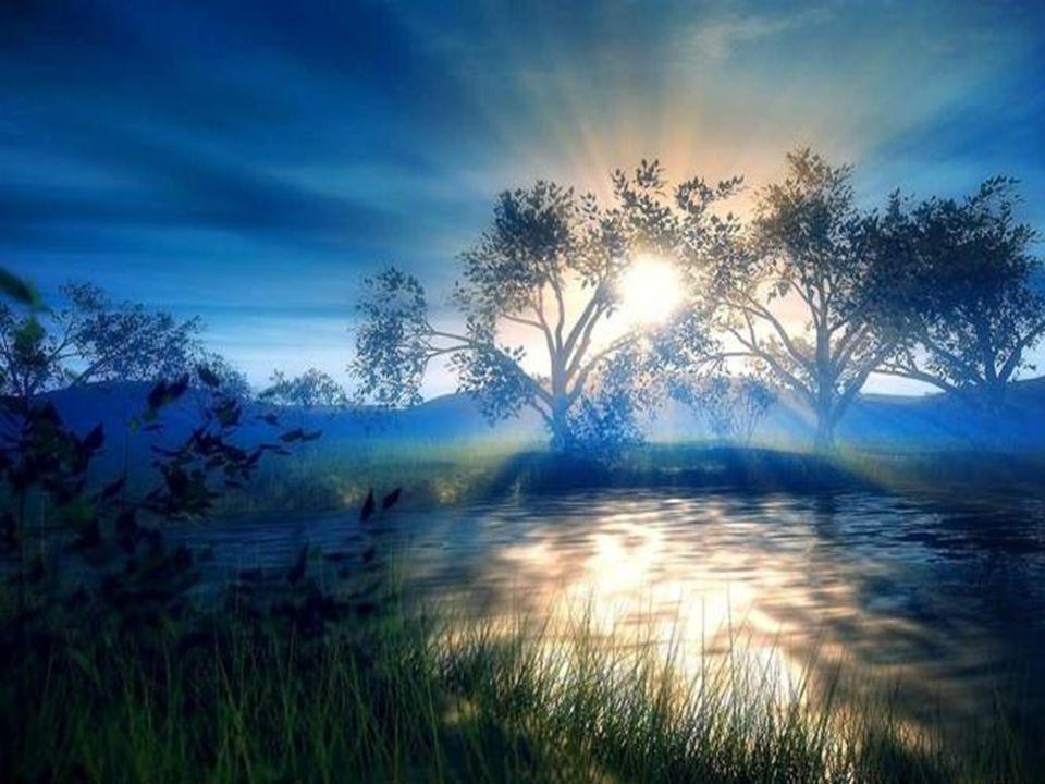 Mon Dieu, quune étincelle de ta charité éclate en nos ténèbres et que laube de la paix se lève en cette année.