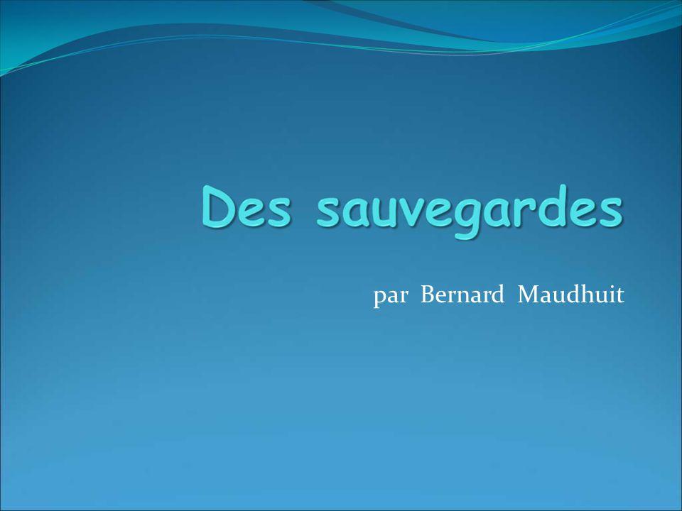 par Bernard Maudhuit