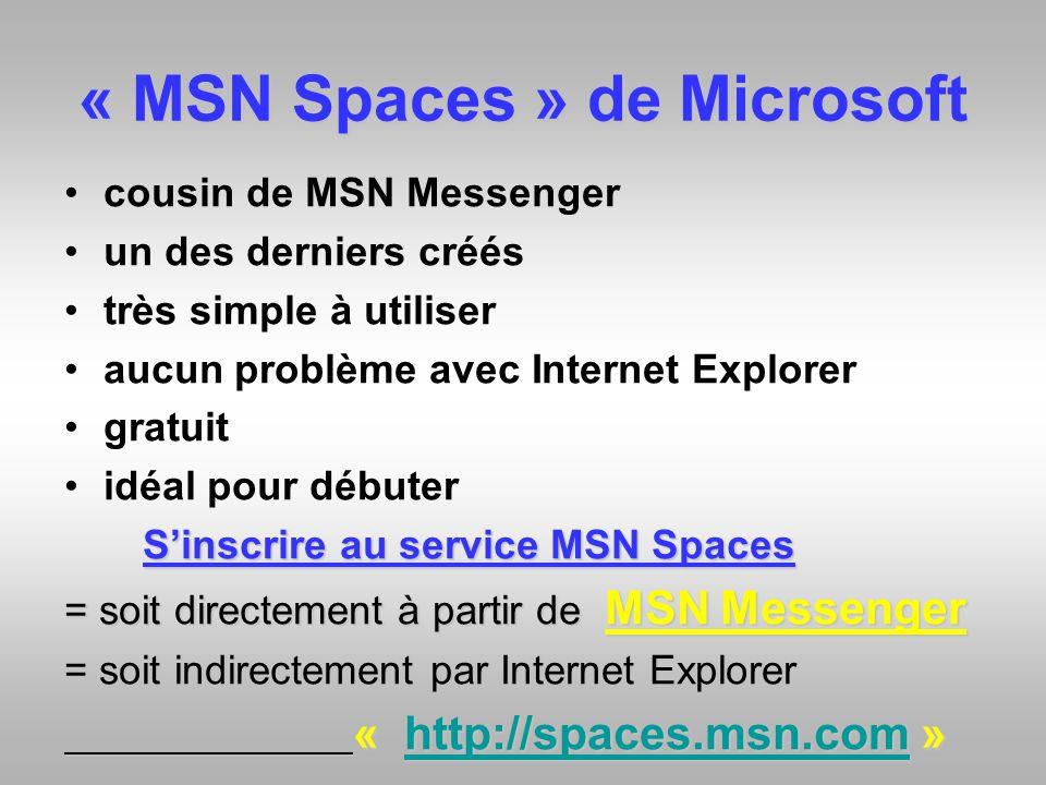 « MSN Spaces » de Microsoft cousin de MSN Messenger un des derniers créés très simple à utiliser aucun problème avec Internet Explorer gratuit idéal p