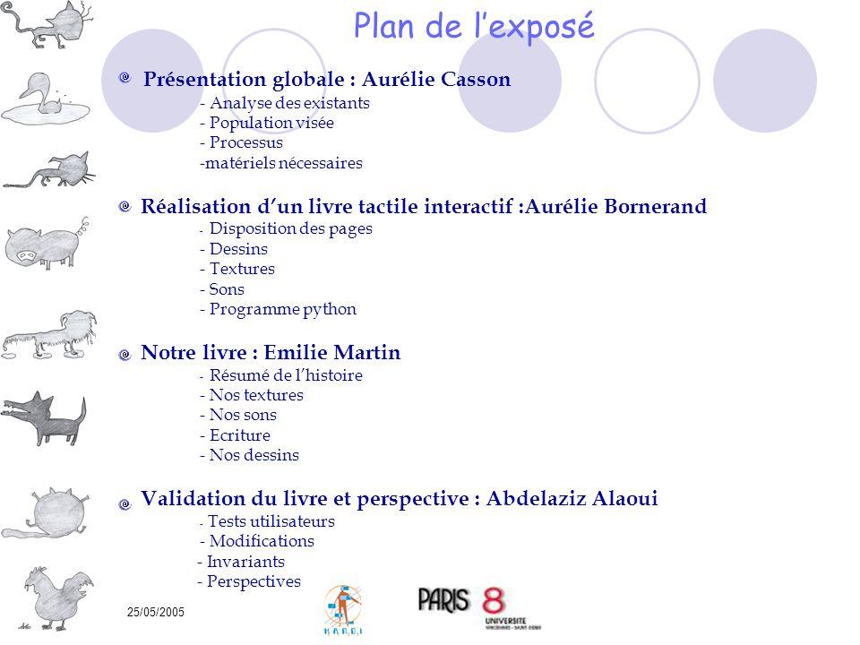 25/05/2005 Plan de lexposé Présentation globale : Aurélie Casson - Analyse des existants - Population visée - Processus -matériels nécessaires Réalisa