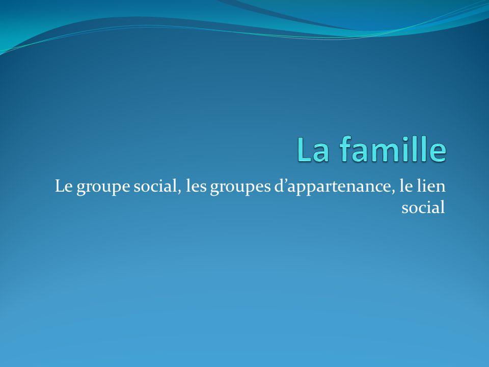 Le groupe social, les groupes dappartenance, le lien social