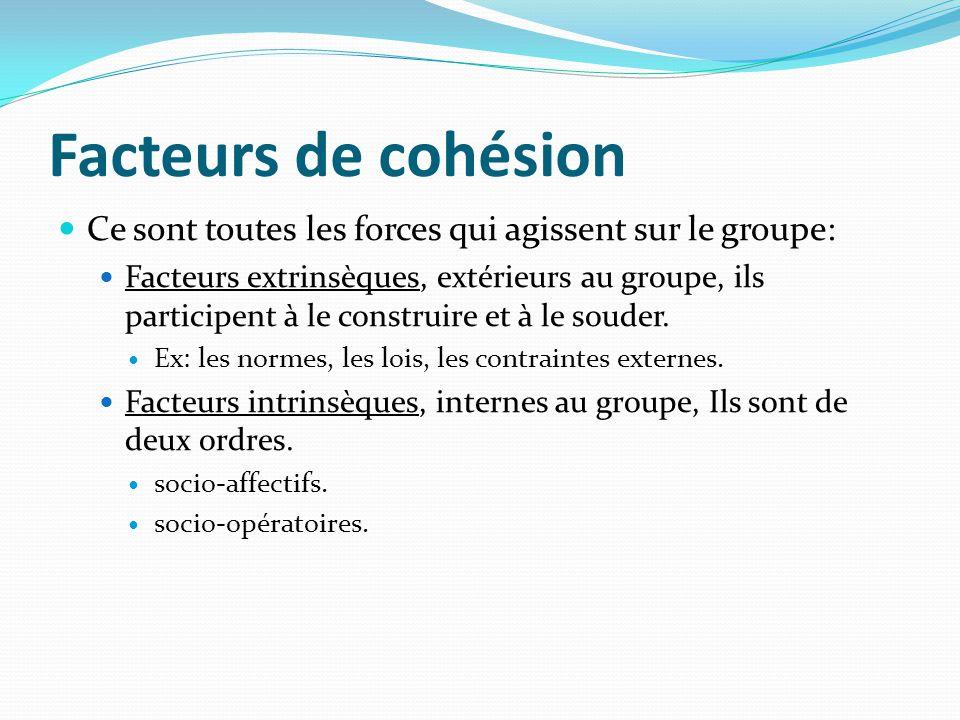 Facteurs de cohésion Ce sont toutes les forces qui agissent sur le groupe: Facteurs extrinsèques, extérieurs au groupe, ils participent à le construir