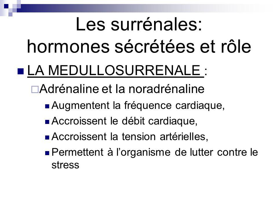 Les surrénales: hormones sécrétées et rôle LA MEDULLOSURRENALE : Adrénaline et la noradrénaline Augmentent la fréquence cardiaque, Accroissent le débi