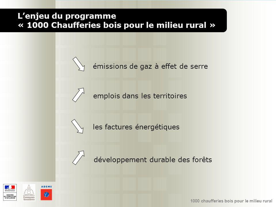 1000 chaufferies bois pour le milieu rural émissions de gaz à effet de serre emplois dans les territoires développement durable des forêts les facture