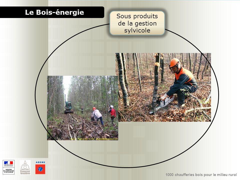1000 chaufferies bois pour le milieu rural Le Bois-énergie Source : ONF Sous produits de la gestion sylvicole