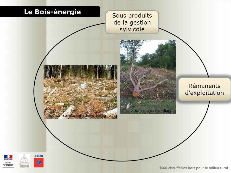 1000 chaufferies bois pour le milieu rural Le Bois-énergie Sous produits de la gestion sylvicole Rémanents dexploitation Source : bois-chauffage Sourc