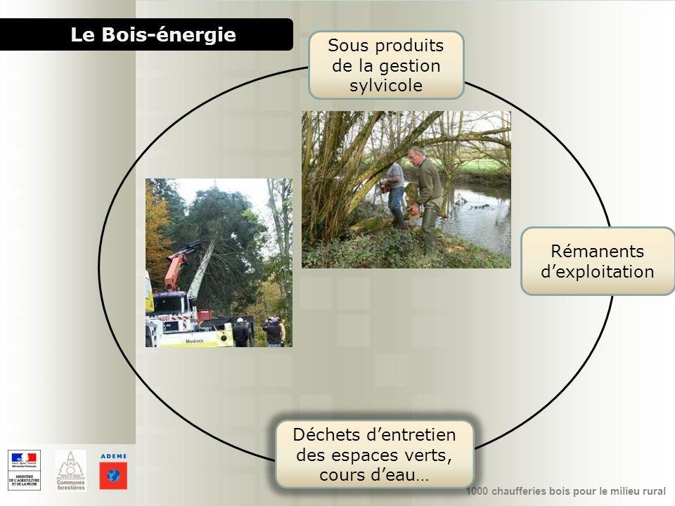 1000 chaufferies bois pour le milieu rural Le Bois-énergie Sous produits de la gestion sylvicole Rémanents dexploitation Déchets dentretien des espace
