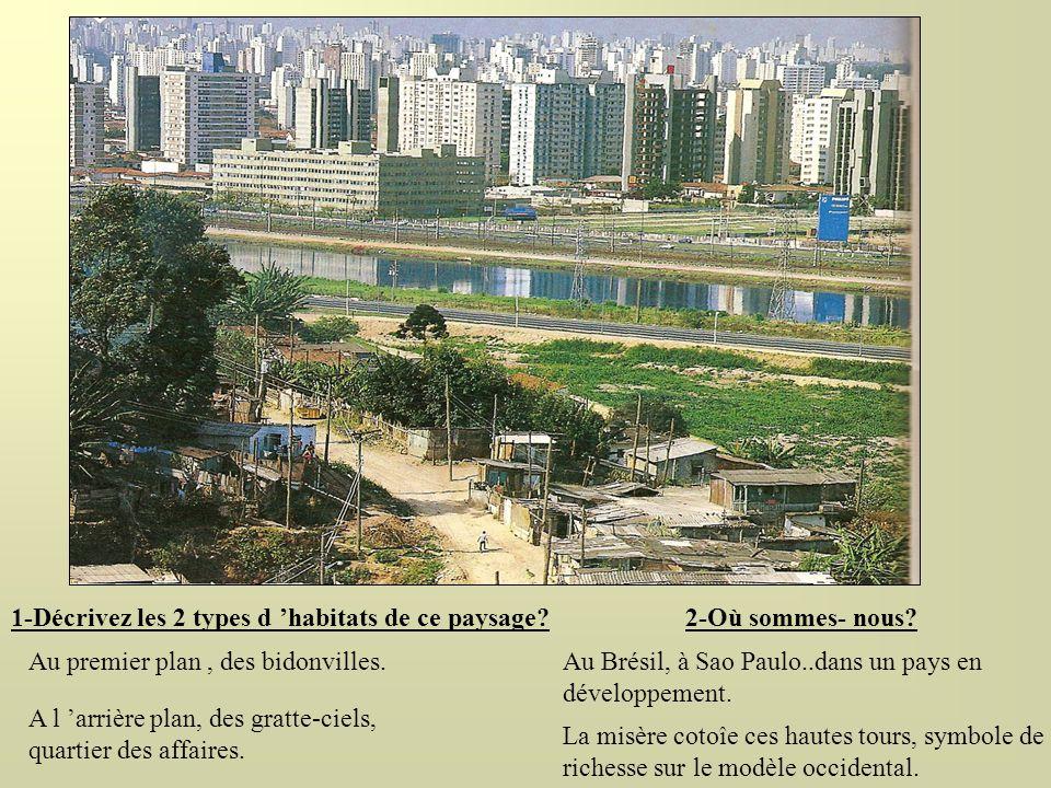 1-Décrivez les 2 types d habitats de ce paysage? A l arrière plan, des gratte-ciels, quartier des affaires. Au premier plan, des bidonvilles. 2-Où som