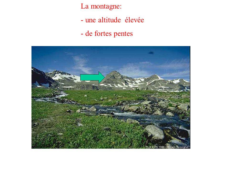 La montagne: - une altitude élevée - de fortes pentes