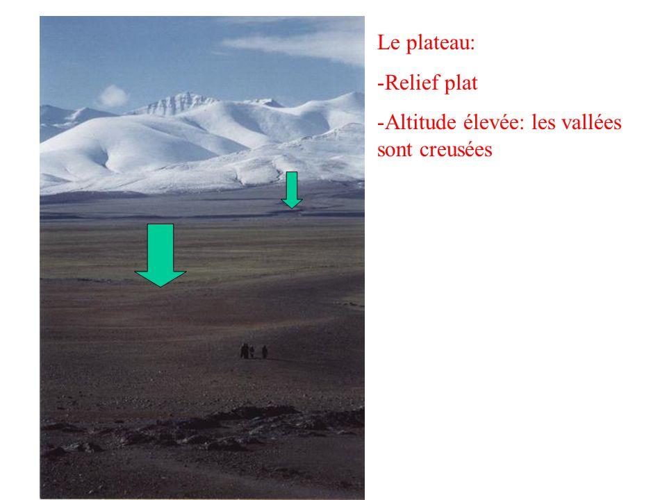 Le plateau: -R-Relief plat -A-Altitude élevée: les vallées sont creusées