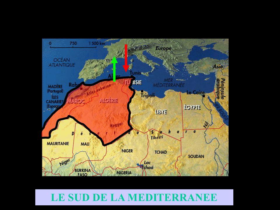 LE NORD DE L AFRIQUE