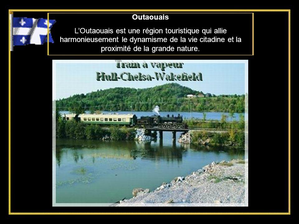 Montréal Ville cosmopolite, multiculturelle et bilingue, Montréal jouit dune personnalité unique, issue dun heureux métissage entre lEurope et le Nouv