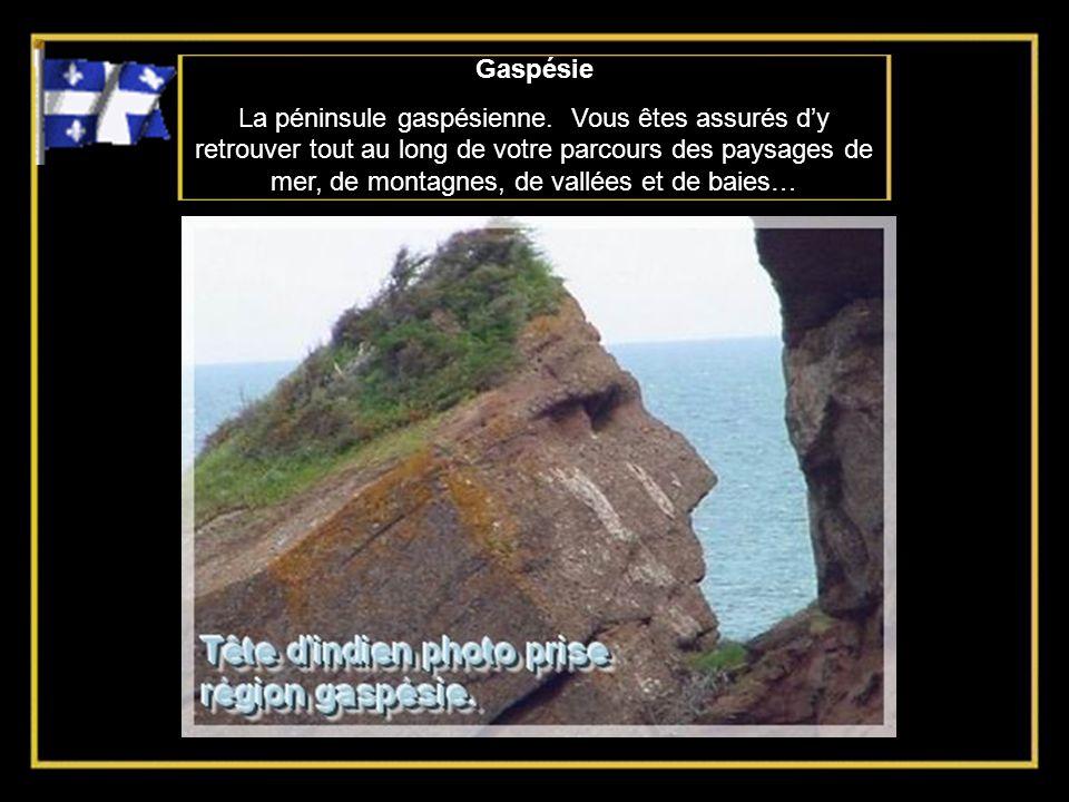 Gaspésie La péninsule gaspésienne.